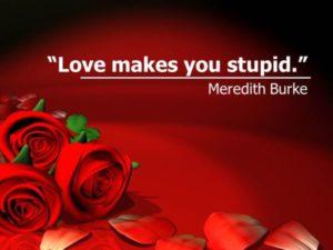 """Love makes you stupid."" Meredith Burke"